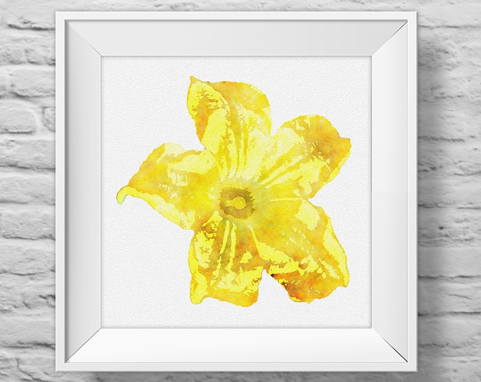 ZUCCHINI FLOWER in YELLOW - unframed square art print, inspirational, nature, floral, watercolor, photography, wall decor. (R&R0139)