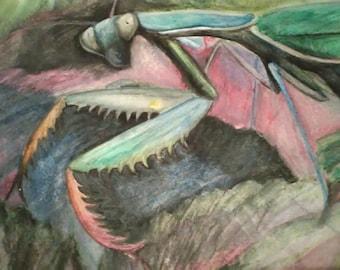 Praying Mantis Oil Pastel Painting