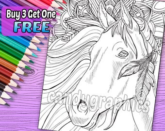 Beautiful Horse 1 - Adult Coloring Book Page - Printable Instant Download