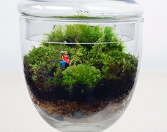 Moss Terrarium // Woodland Lovers 3 // Little People // Valentines Day // Anniversary // Wedding // Green Gift // Home and Living