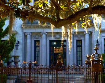Travel Photography - Savannah Dripping in Gold - Architectural, Southern, Nature, Landscape, Fine Art Photography