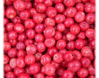 Pink Peppercorn  4 ounces Free Shipping