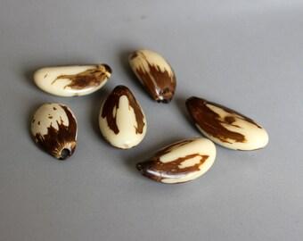 10pcs Natural Bodhi Seeds Meditation Prayer Beads 20mm x 15mm - A85