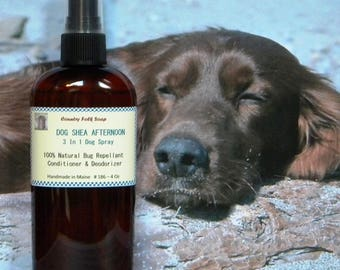 Dog Spray, DOG SHEA AFTERNOON, Natural Dog Spray, Pet Grooming Spray, Dog Deodorizer, Bug Repellent Spray For Dogs