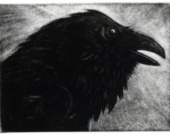 Raven artwork , Raven, crow,   Engraving, 3 x 4 inch 2012