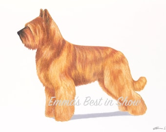 Briard Dog - Archival Quality Fine Art Print - AKC Best in Show Champion - Breed Standard - Herding Group - Original Art Print