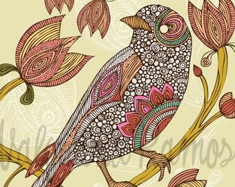 Anais the bird Print