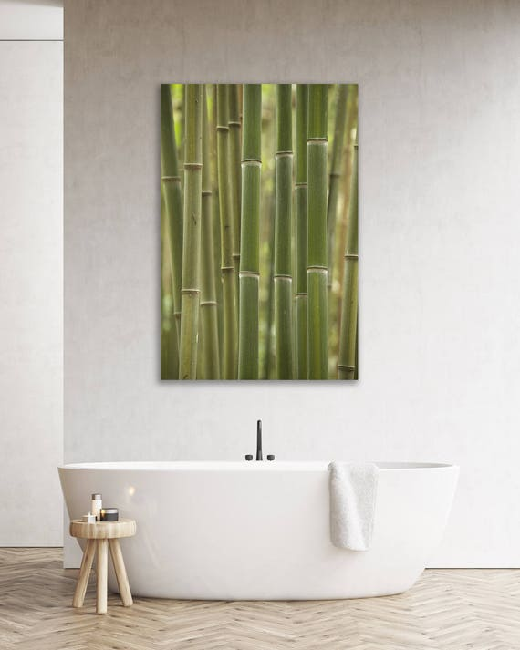 Bamboo Photo Print Bamboo Art Print Spa Art Bathroom Decor