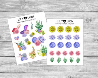 SUCCULENT Planner stickers - Plum Paper - Erin Condren - Happy Planner - Deco - Decorative - Bujo - EC - Matte