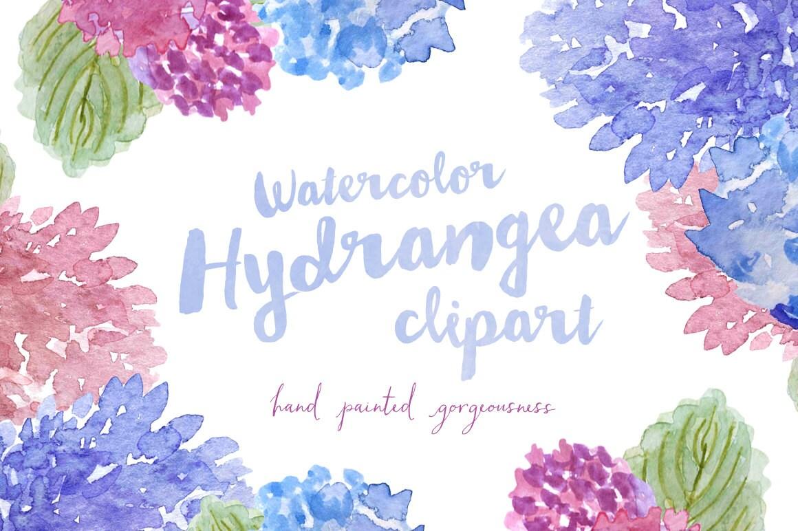 hydrangea watercolor hand painted clipart clip art personal rh etsy com hydrangea clip art border free hydrangea clip art free