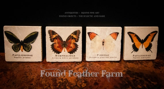 Tumbled Stone Beverage Coasters with Vintage Butterfly Images