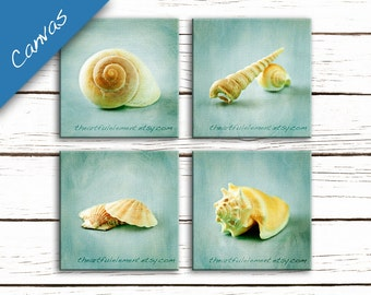 Seashell art, Canvas coastal decor, Home decor wall art, Beach decor, Seaside decor, Shell art, Bathroom // Seashell Still Life canvas set