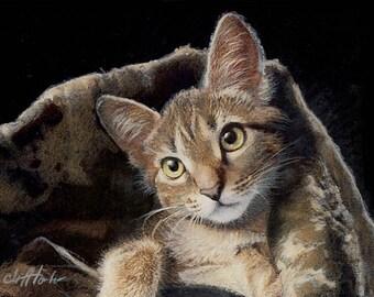 Custom pet portrait, hand painted not digital, cat illustration, cat portrait, memorial art, pet painting, pet gift, traditional pet art,