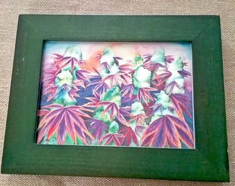 Emerald Forest Cannabis Framed Art Print