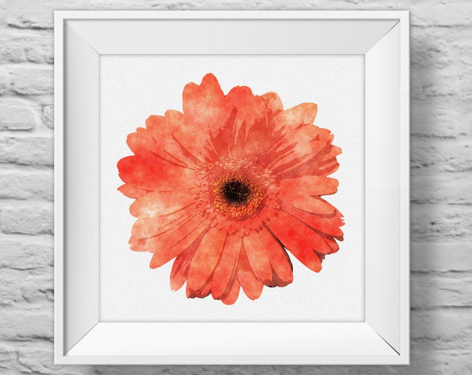 GERBERA DAISY in ORANGE - unframed square art print, inspirational, nature, floral, watercolor, photography, wall decor. (R&R0101)