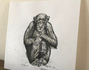 100 Animals, 100 Days: 87/100 The Chimpanzee