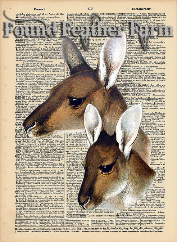 """Vintage Antique Dictionary Page with Antique Print """"Kangaroos"""""""