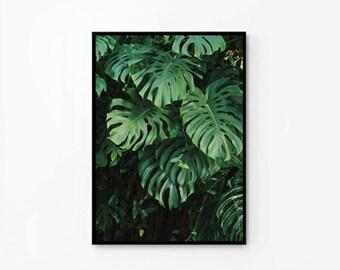 Tropical leaf print printable photography Monstera print  Printable poster Decor, Cafe Kitchen digital file 50x70 INSTANT DOWNLOAD
