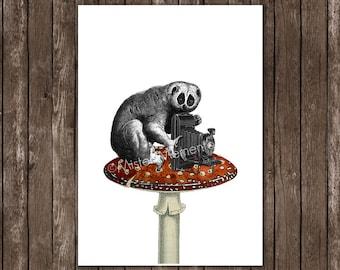 slow loris with antique camera poster print - lori art - art print, monkey wall art