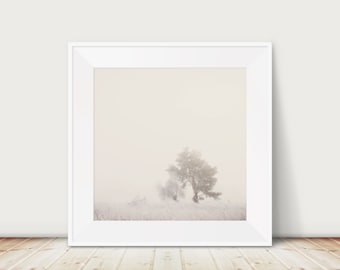 tree photograph winter photograph nature photography landscape photograph fog photograph snow photograph tree print