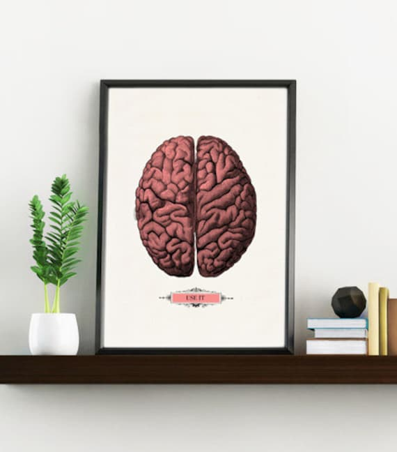 Human Brain, Anatomical art, Anatomy art, Wall art, Wall decor, Gift for Doctor, Medical art, Science art, Wholesale, Brain art, SKA054WA4