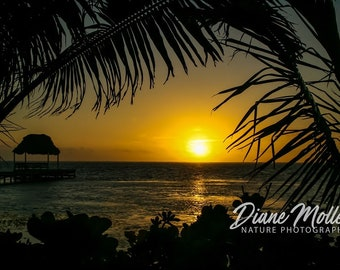 Ambergris Caye,Belize, Sunset,Photo, Caribbean beach, Coast, Fine Art Print,Canvas,Metal Art, Wall Art, Nature Photography, Wall Decor