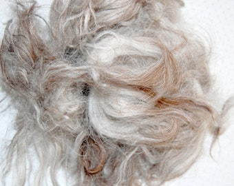 Karakul Sheep Wool Locks for Spinning, Felting, Santa Beards, Doll Hair, Doll Wig, Cream White with Taupe Highlight Streaks 1 oz.