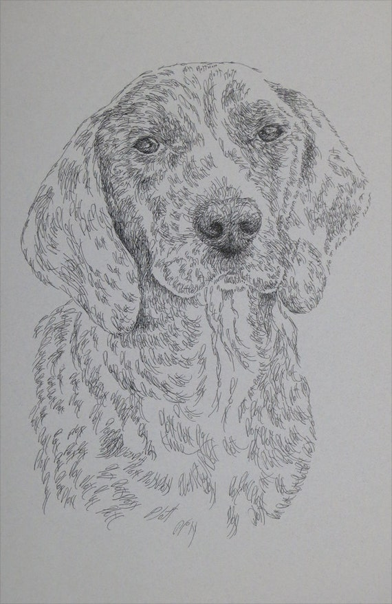 Plott Hound dog art portrait drawing from words. Your dog's name added into  art FREE. Great gift.11X17 Lithograph 20/500