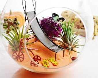 "My Playground Terrarium Kit ~ 6.5"" Sitting Air Plant Terrarium Kit ~ Slide, FlipFlops, Tricycle ~ Home Decor ~ Garden- Gift ~ Mother's Day"