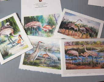 Sandhill Cranes, Variety 5 Note Cards 5 x 7 blank greeting Notes Handmade watercolor prints