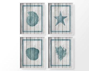 Seashell Art, Nautical Sea Life Set 4 Set, Rustic Beach Decor, Coastal Decor, Bathroom Decor, Nautical Decor, Beach House Decor, 0258