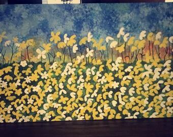 Feild of daisies