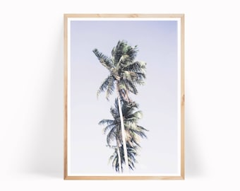 Palm Trees Print - Tropical Palm Poster - Boho Decor - Palm Tree Photography