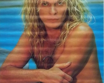 Van Halen 23x35 David Lee Roth Poster 1983 Swimming Pool