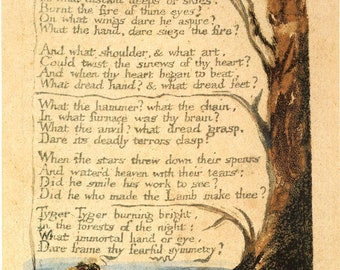 The Illuminated Prints of William Blake. From Songs of Experience: The Tyger, c.1793-4. Fine Art Reproduction.