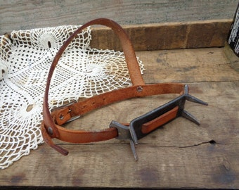 Rustic Vintage Primitive • Leather Cow Calf Weaner Collar | Equine Equestrian Cattle Ranch Animal Country Farm Farmhouse Shabby Decor | USA