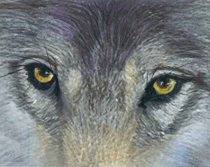 Wolf Eyes - Prismacolor Original Painting - Prints and Cards