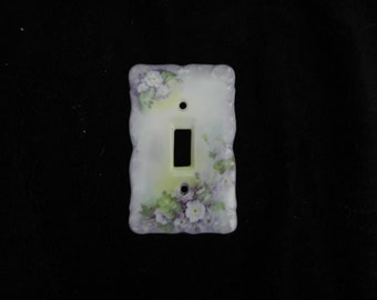 Switch Plate: Hand Decorated