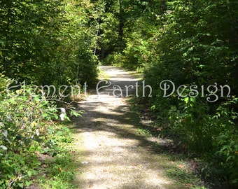 Path in the Woods, Instant Download, 11x14, Digital Printable, Fine Art Digital Photo, Photography, woods, forest, woodland, landscape