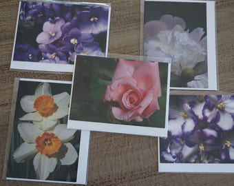 Set of FIVE Assorted Flora Note Cards