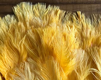 DELICATA OSTRICH PLUMES  , School Bus  Yellow / 2026