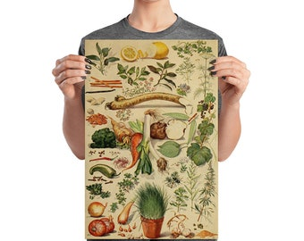 Vintage Herbs and Spices Kitchen Art Poster, Matte Paper, 12 by 18 inches