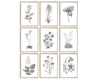 Black and White Art Print SET of 9, black and white decor, botanical prints, botanical drawings, botanical posters, botanical set, 11x14