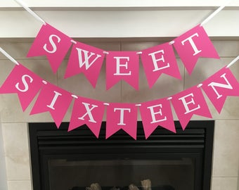 Sweet Sixteen Party, Sweet Sixteen Banner, Sweet 16 Decoration, Girl Birthday Party, Birthday Banner, Photo Prop, Hot Pink