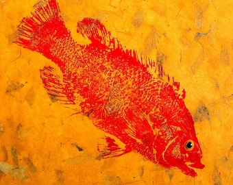 ORIGINAL Red Salt Water Cunner 12 inch square Fish Rubbing (GYOTAKU) on hand made paper by artist Barry Singer