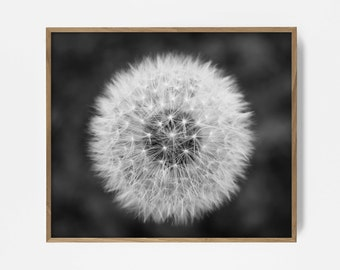 Dandelion Printable Photography, Black & White, Photo, Make A Wish Decor, Wall Collage, Dandelion Art, Dandelion Print, Make A Wish, Wish