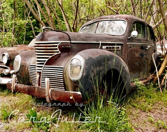 1939 Black De Soto Custom De Luxe Sedan in Trees Photograph