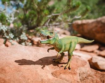 Boys Room Art, T-Rex Print, Dinosaur Photo, Nursery Decor, Dino Decor, T-Rex Dinosaur Art Print, Kids Wall Art, Paleontology, Tyrannosaurus