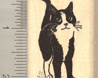 Adorable Black and White Cat Rubber Stamp H10214 WM