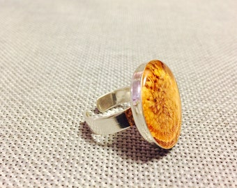 Sterling Silver Ring with REAL Passion Fruit in Resin - FREE SHIPPING!!!